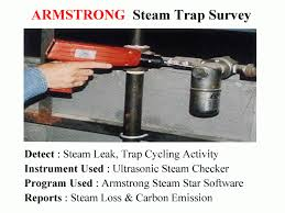 Steam Trap Survey