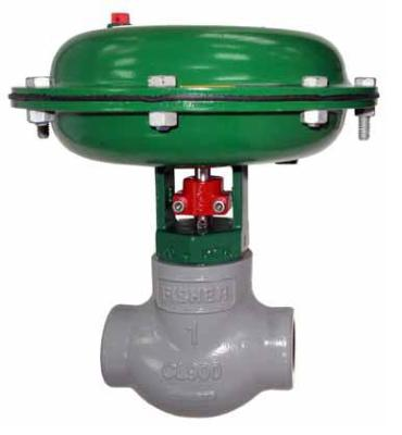 Fisher D2 FloPro Control Valve